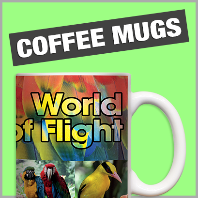Promotional Coffee Mugs with no MOQ